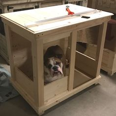 Custom Dog Kennel or dog crate  Follow us @ kennel and crate on Facebook!  So may to chose from!