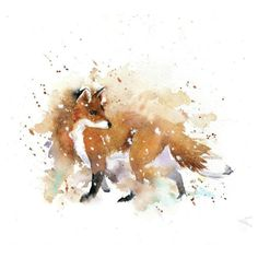 Leading Illustration & Publishing Agency based in London, New York & Marbella. Watercolor Fox Tattoos, Watercolor Images, Watercolor Design, Watercolor Animals, Fox Watercolour, Painting & Drawing, Fox Painting, Muse Art, Brown Art