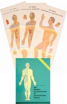Illustration of acupressure points