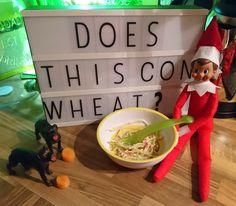 Elf on the Shelf goes gluten free