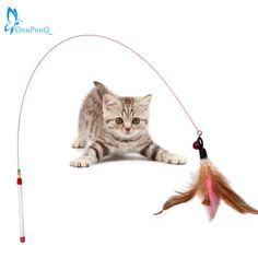 OnnPnnQ Funny Cat / Kitten Pet Teaser Feather Wire Chaser Pet Toy Wand Beads Play NEW //Price: $7.95 & FREE Shipping //     #catshop