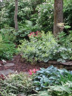 Terie's garden in New York