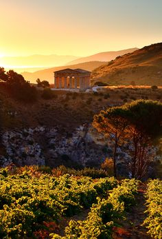 *** Wow, this is a gorgeous shot of Segesta. I had the opportunity to visit there. Segesta, Sicily by James Appleton
