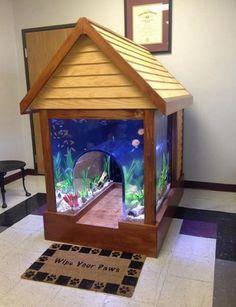Decoración de casa de perro para veterinaria hecho por con el agua al cuello (programa de animal planeta)