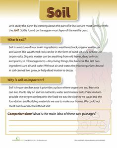 Worksheets: What is Soil?