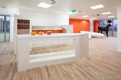 Geneity Offices, London. Architect: Barr Gazetas
