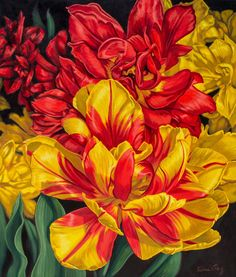 """Fiona Craig - Fine Art - Tulipomania 14: Red and Yellow, oil on canvas, 42"""" x 36"""", US$3,500."""