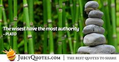 Enjoy these great Authority Quotes. Wisdom and Authority Quote Law Quotes, Post Quotes, Jokes Quotes, Daily Quotes, Be Yourself Quotes, Picture Quotes, Garden Sculpture, Author, Wisdom