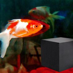 Wilove Nano Water Purification Cube for Fish Tank Bottom Filter Material Beneficial Bacteria Cultivation Eco-Aquarium Water Purifier Cube