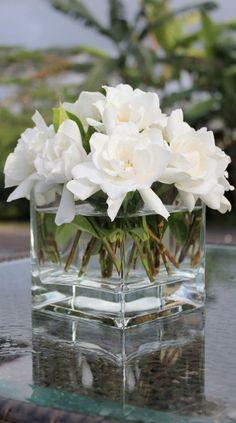 ARRANJO DE FLORES Beautiful fresh Gardenias