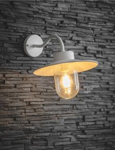 Outdoor Swan Neck Light in Grey, Black, Silver or White | Garden Trading Outdoor Light Fixtures, Outdoor Wall Lighting, Exterior Lighting, Outdoor Walls, Painted Front Doors, Traditional Exterior, Glass Replacement, Shades Of White, Led Lamp