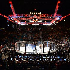 See a UFC fight in Vegas.