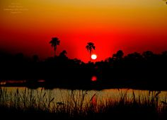 Sunset in the Okovango Delta by Jeff Corey