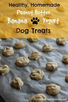 homemade peanut butter banana yogurt dog treats from www.crayonsandcollars.com