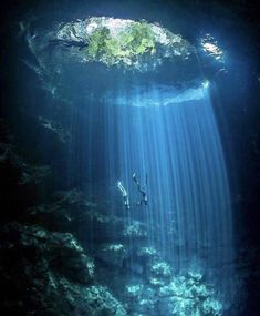 A diving paradise 💦 Cenote El Pit, Quintana Roo, Mexico. Photo by Who would you take to experience. ✴️ Good Vibes Lifestyle ✴️ Self-Help ↗️ new releases and popular ebook 💎 Underwater Caves, Underwater Photos, Underwater World, Underwater Photography, Nature Photography, Travel Photography, Fashion Photography, Adventure Photography, Photography Women
