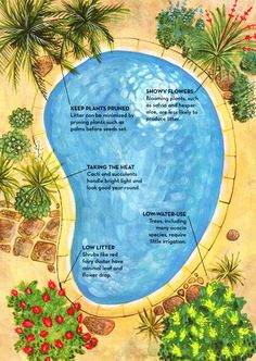 Read: Poolscaping Basics. Like a frame around a picture, the landscape that surrounds a pool.....