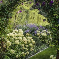 21 Green Thumb Ideas Plants Outdoor Gardens Planting Flowers
