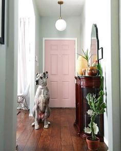 Infusing Color and DIY Charm into a Cookie-Cutter Home in New...