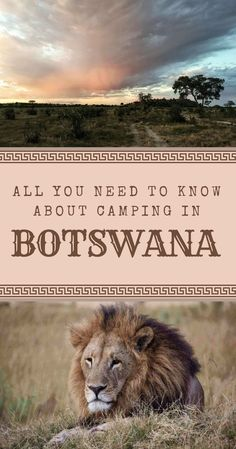 best way to see Botswana, Africa, is on an overland trip and camping in the . - The best way to see Botswana, Africa, is on an overland trip and camping in the … -The best way to see Botswana. Delta Do Okavango, Camping Essentials, Camping Hacks, Camping Guide, Travel Photographie, Chobe National Park, Camper, Africa Destinations, Travel Destinations