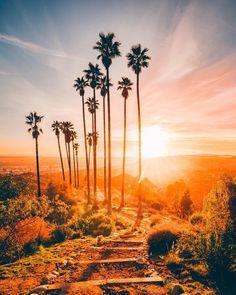Los Angeles California by Ivan Wong by CaliforniaFeelings.com california cali LA CA SF SanDiego