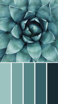 Blue neutral color palette earth tones