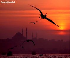 伊斯坦布爾的黃昏之美。 ©olcayaytar