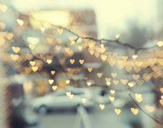 Yeowzers: Heart Collection -11 Lighted photos
