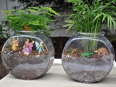For even the most botanically inept, terrariums are super easy to make and incredibly low-maintenance. They also make pretty much the best gifts or party favors ever.