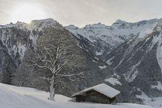 Braunwald im Kanton Glarus Schweiz Mount Everest, Mountains, Nature, Travel, Outdoor, Forests, Outdoors, Naturaleza, Viajes