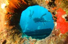 Worlds best shipwreck dives