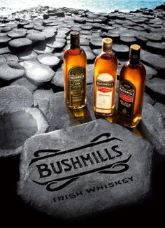 Old Bushmills Distillery was founded in 1608. Bushmills whiskey is produced, matured, and bottled on-site at the Bushmills Distillery in Bushmills, County Antrim, Northern Ireland.