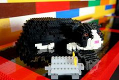 """The LEGO house came with its resident LEGO cat!  But during the """"deconstruction"""" of the house,  he went missing.  Most believe he was catnapped by someone wanting a """"memento"""" from the LEGO house."""