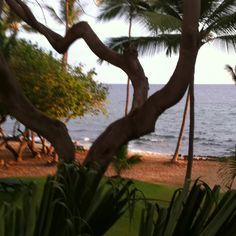 My beach Kona, HI