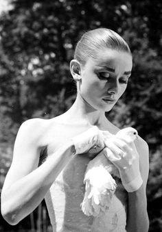 Audrey Hepburn holding a white dove. Exquisite.