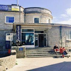 Passage par la station de biologie marine de Concarneau (la 1ère qui a été ouverte dans le monde).