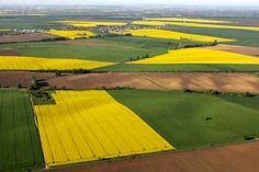Основа концепції ринку землі - орієнтир на дрібних та середніх аграріїв   Офіційний сайт міністерства аграрної політики та продовольства України