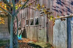 The Side Of The Barn  The old barn is abandoned and forgotten. Three windows are broken and junk is hidden between the barn and the cement block shed. The scrawny tree has lost most of the autumn leaves. This photograph was shot in central Ohio.