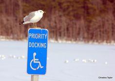Priority Docking