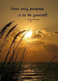 You're only purpose is to be yourself