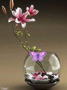 Flowers Gif, Butterfly Flowers, Beautiful Butterflies, My Flower, Most Beautiful Gardens, Beautiful Gif, Beautiful Roses, Apple Wallpaper, Wallpaper Backgrounds