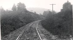 Shawmut line, somewhere in Allegany County, NY. Date Unknown.