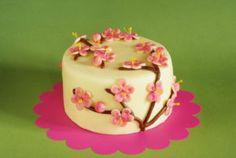 Dorty, koláče, bonbóny, sladkosti ...