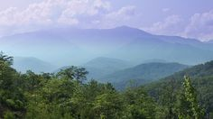 Escape to the Great Smoky Mountains >> http://www.travelchannel.com/interests/packages/long-weekends/photos/21-popular-cities-for-long-weekend-getaways?soc=pinterest