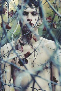 Alex Stoddard - Photography