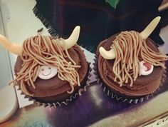 Cheeky Highland Cow Cupcakes