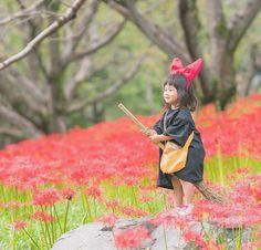 いいね!16.9千件、コメント118件 ― 東京カメラ部さん(@tokyocameraclub)のInstagramアカウント: 「「@photo_shorttrip」Instagramアカウントへの @kohatanpe さんの投稿作品。いいね&コメント大歓迎です。 東京カメラ部分室 photo_shorttripでは…」