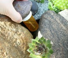 25 Ways to Recycle and Reuse Empty Prescription Pill Bottles – Page 8 – Fabulous Betty Survival Life, Survival Food, Outdoor Survival, Survival Prepping, Survival Skills, Survival Hacks, Emergency Preparedness, Survival Stuff, Survival Equipment