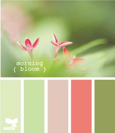 Design Seeds®: For All Who Love Color | morning bloom  Horseshoe kitchen colours