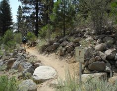 Hike and Bike Brown's Creek Trail in the forest of south Reno: Brown's Creek Trail in south Reno is for hikers and mountain bikers.