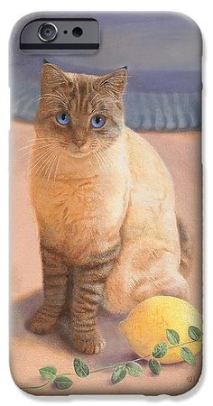 Click the image to buy this new phone case on Fine Art America.  An impact-resistant, slim-profile, hard-shell case!  Nancy Lee Moran painted the art of the cat and the border in oil by hand.  See more cat art on Moran's blog page. ♡ http://nancyleemoran.com/blog/?p=880 ♡ #catart #ragdoll #Colorpoint #shorthair #TabbyPoint #Siamese #tabby #kitty #pussycat #feline #peach #lemon #fruit #vinca #border #daisy #catlovers #nancyleemoran #FineArtAmerica #chat #Kätzchen #gatito #gato #phone #iPhone